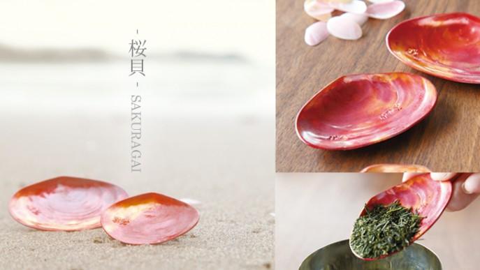 桜貝-SAKURAGAI-